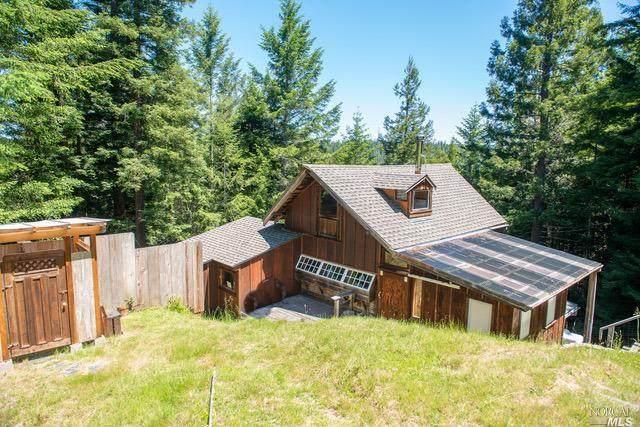 Albion, CA 95410 :: W Real Estate | Luxury Team