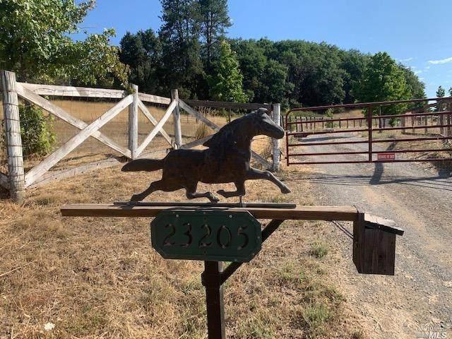 23205 Live Oak Road, Willits, CA 95490 (#22017246) :: RE/MAX GOLD