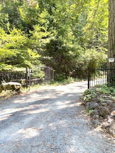 12227 Mays Canyon Road, Guerneville, CA 95446 (#22019125) :: Golden Gate Sotheby's International Realty