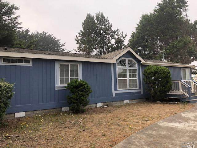 17650 Pacific View Drive, Manchester, CA 95459 (#22021892) :: Jimmy Castro Real Estate Group