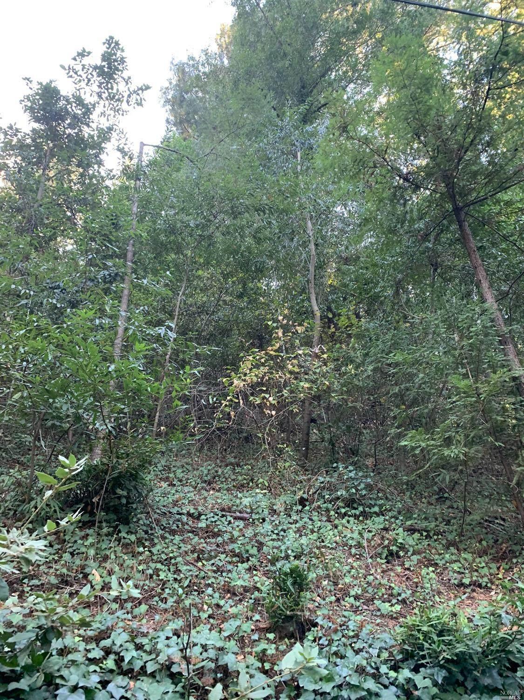 10390 Woodside Drive - Photo 1