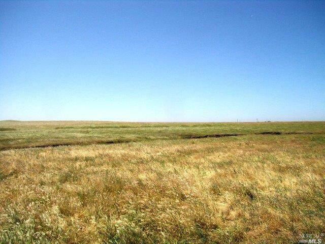 31288 E State Route 4 Highway, Escalon, CA 95230 (#22025069) :: Jimmy Castro Real Estate Group