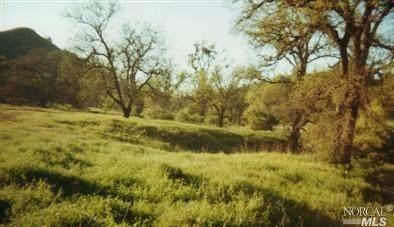 9809 Rocky Creek Road, Lower Lake, CA 95457 (#22025388) :: Corcoran Global Living