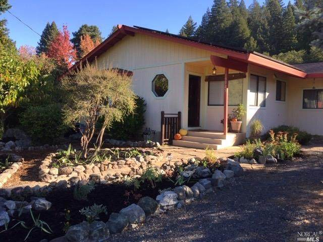 15925 Birkhofer Road, Guerneville, CA 95446 (#22025469) :: Corcoran Global Living
