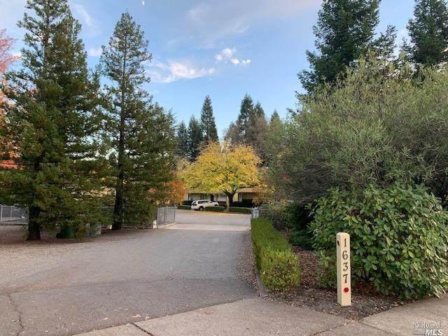1637 Spring Street, St. Helena, CA 94574 (#22028361) :: W Real Estate | Luxury Team