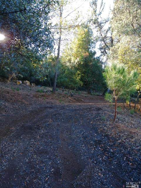 10039 Point Lakewiew Road, Kelseyville, CA 95451 (#22028603) :: Hiraeth Homes