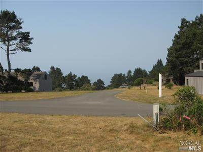 35604 Timber Ridge Road, The Sea Ranch, CA 95497 (#22028800) :: RE/MAX Accord (DRE# 01491373)