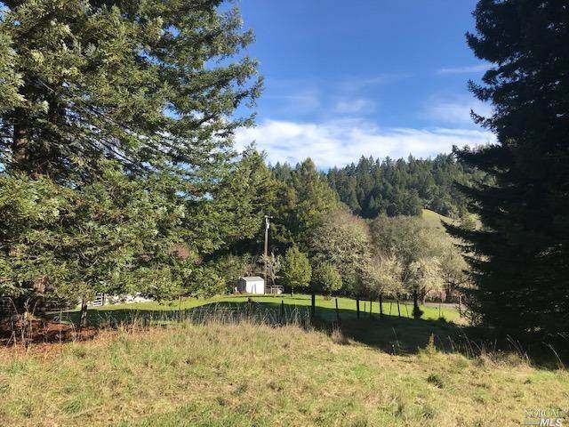 7800 Flynn Creek Drive, Comptche, CA 95427 (#22031549) :: HomShip