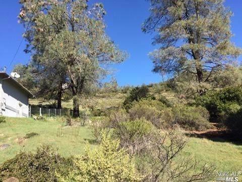 16300 Eagle Rock Road - Photo 1