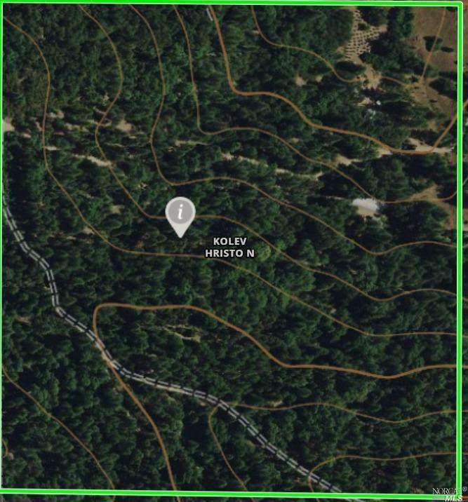 49935 Timberridge Trail - Photo 1