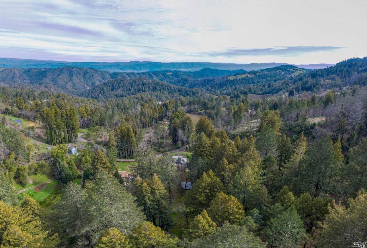 3397 Mount Veeder Road - Photo 1