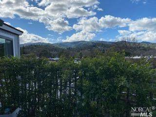 67 Scottsdale Way, Novato, CA 94947 (#321006583) :: Golden Gate Sotheby's International Realty
