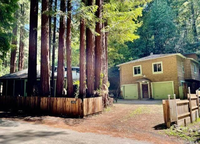 14624 Canyon 1 Road, Guerneville, CA 95446 (#321024903) :: Hiraeth Homes