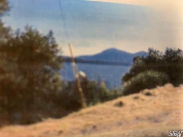 11918 Wigeon Way, Clearlake Oaks, CA 95423 (#321028024) :: Lisa Perotti | Corcoran Global Living