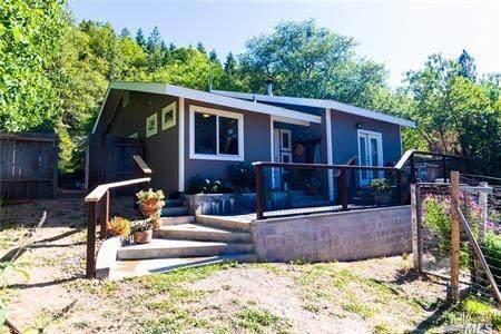 8215 Saddle, Kelseyville, CA 95451 (#321056247) :: The Abramowicz Group