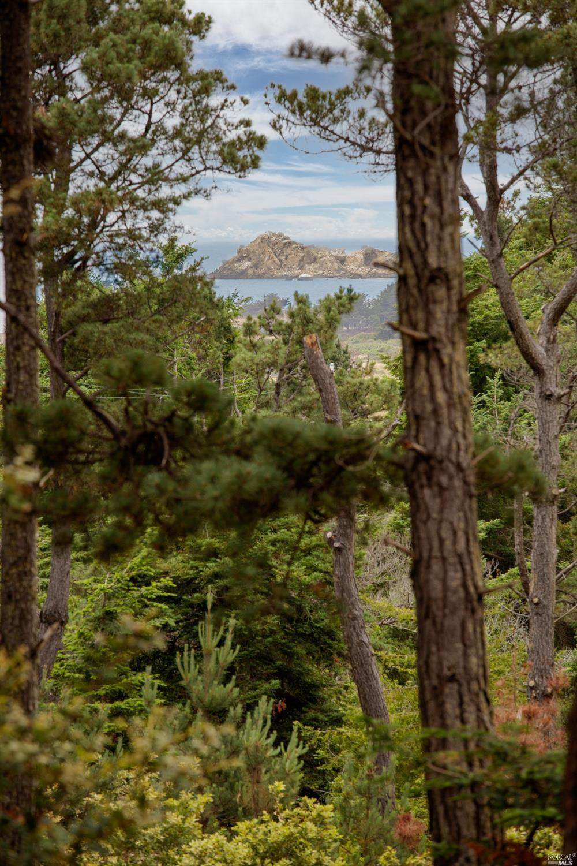 37900 Marine View Drive - Photo 1