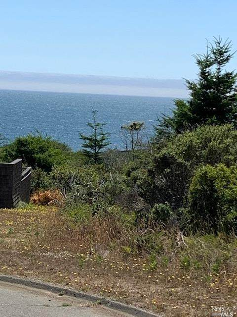 38240 Green Vale Close, The Sea Ranch, CA 95497 (#321060132) :: Golden Gate Sotheby's International Realty