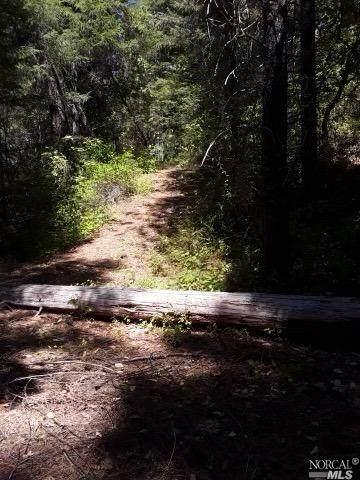 18941 Ridgeway Highway, Potter Valley, CA 95469 (#321071021) :: RE/MAX Accord (DRE# 01491373)