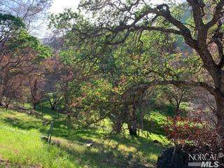 3874 Ciarlo Lane, Vacaville, CA 95688 (#321091550) :: Rapisarda Real Estate
