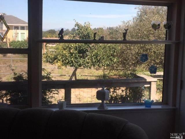 8926 Bodega Hwy, Sebastopol, CA 95472 (#321093132) :: Hiraeth Homes