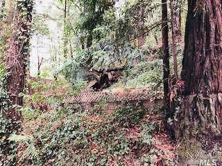 14621 Eagle Nest Lane, Guerneville, CA 95446 (#321100371) :: Lisa Perotti | Corcoran Global Living
