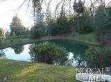 16401-A Mid Mountain Road, Potter Valley, CA 95469 (#21909390) :: Intero Real Estate Services