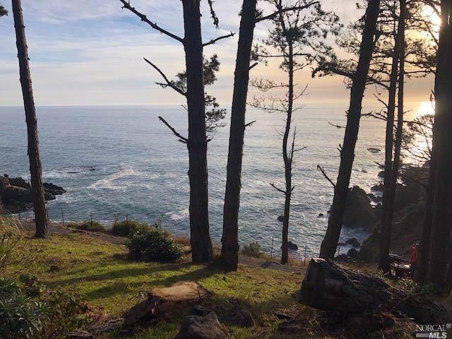 22144 Highway 1, Timber Cove, CA 95450 (#21930359) :: Rapisarda Real Estate