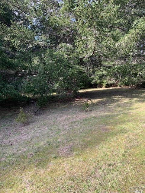 807 River Beach Road, The Sea Ranch, CA 95497 (#22002724) :: Lisa Perotti | Zephyr Real Estate