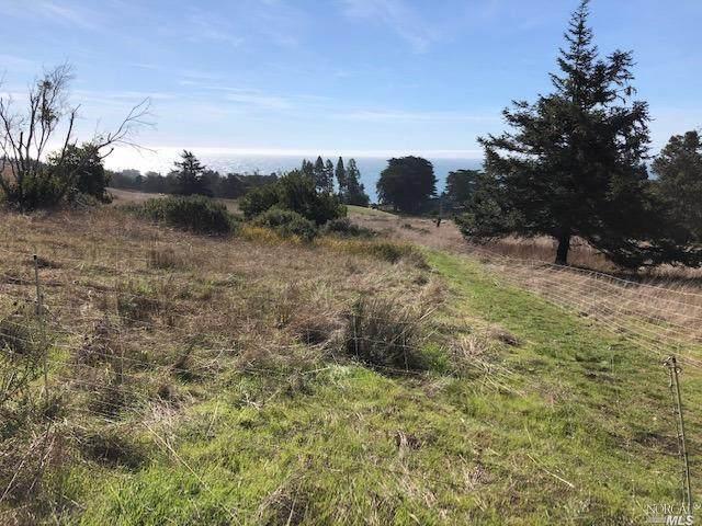 37284 Rams Horn Reach, The Sea Ranch, CA 95497 (#22003542) :: Rapisarda Real Estate