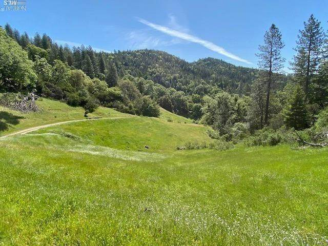 16401-A Mid Mountain Road, Potter Valley, CA 95469 (#22008063) :: W Real Estate | Luxury Team
