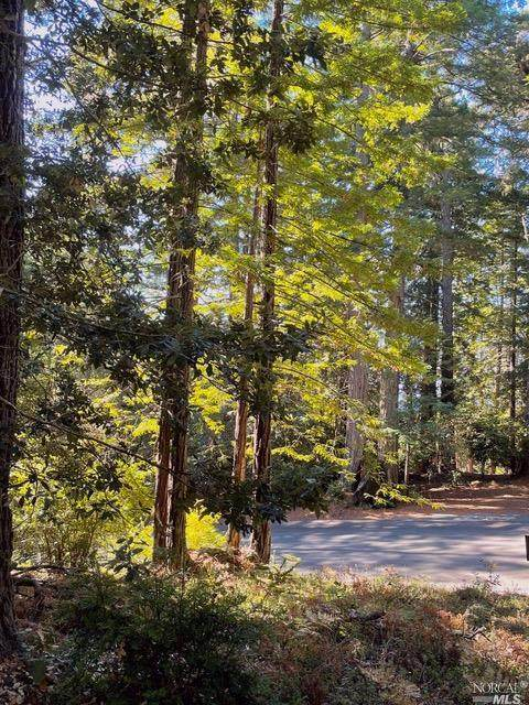 334 Moonraker Road - Photo 1