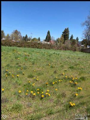 36 Franklin Avenue, Willits, CA 95490 (#321026549) :: The Abramowicz Group