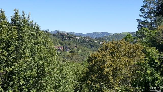 640 Bolinas Road, Fairfax, CA 94930 (#21709451) :: Corcoran Global Living