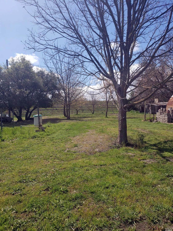 1597 Las Amigas Road - Photo 1