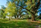 377 Willow Garden Ln - Photo 7