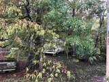 Lot 20 Amite River Rd - Photo 2