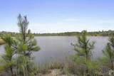 263.68 acres Cassie Dr - Photo 1