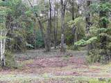 Tract 2-D Shadow Lake Dr - Photo 1