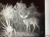 12475 Laurel Ridge Rd - Photo 15
