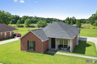 1418 W Sidney St, Gonzales, LA 70737 (#2017007893) :: Darren James Real Estate Experts, LLC