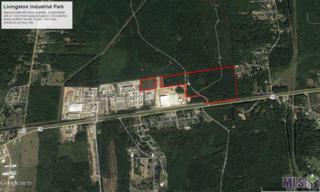 30000 Industrial Park Dr, Walker, LA 70785 (#2017007916) :: Darren James Real Estate Experts, LLC
