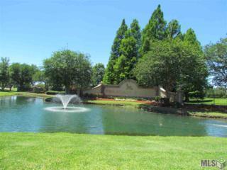 6291 Royal Lake Estates Ave, Gonzales, LA 70737 (#2017007942) :: Darren James Real Estate Experts, LLC