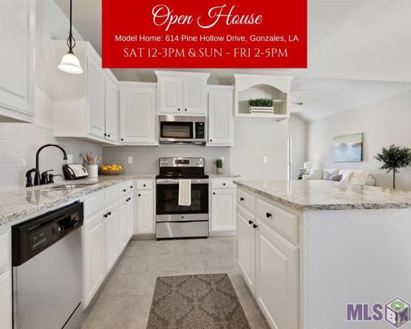 340 Hollow Ridge Ave, Gonzales, LA 70737 (#2019004517) :: Darren James & Associates powered by eXp Realty