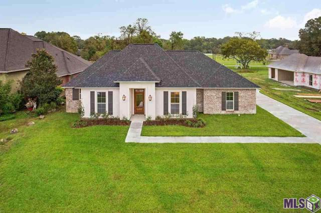 14292 Autumn Place Dr, Gonzales, LA 70737 (#2018012047) :: Patton Brantley Realty Group