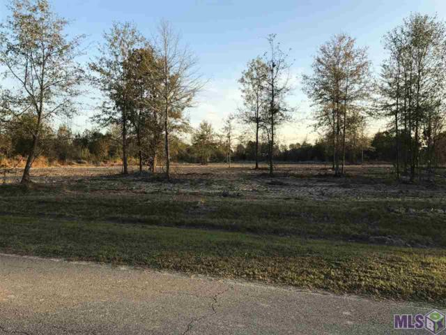 34682 Quarter Horse Ln, Walker, LA 70785 (#2017011241) :: Darren James & Associates powered by eXp Realty