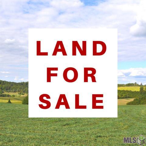 Lot 30 Goudchaux, Baton Rouge, LA 70807 (#2017016012) :: South La Home Sales Team @ Berkshire Hathaway Homeservices