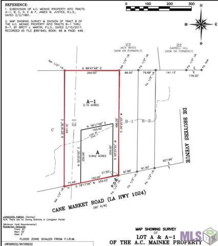 Lot A-A1 Cane Market, Denham Springs, LA 70706 (#2017016155) :: Darren James & Associates powered by eXp Realty