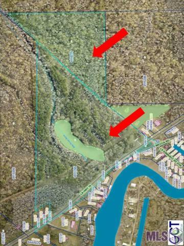 La Hwy 16, Denham Springs, LA 70733 (#2018008692) :: Trey Willard of Berkshire Hathaway HomeServices United Properties