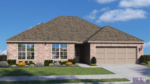 40130 Chestnut Oak Dr, Gonzales, LA 70737 (#2018012084) :: David Landry Real Estate