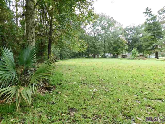 14517 George Rouyea Rd, Gonzales, LA 70737 (#2018017621) :: The W Group with Berkshire Hathaway HomeServices United Properties